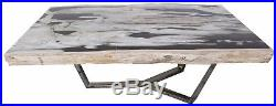 45 W rectangular coffee table petrified wood polished top stainless steel DK9